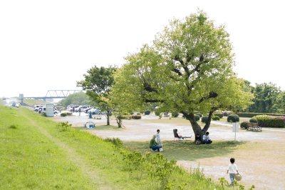木曽川緑地公園