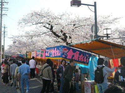 大江川桜祭り