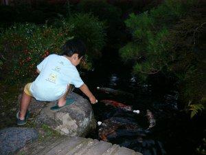 川魚料理魚勝