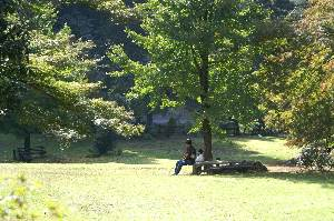 横蔵寺いこいの森