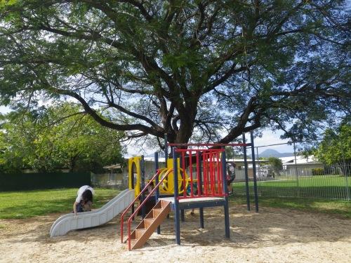 ケアンズの小さな公園