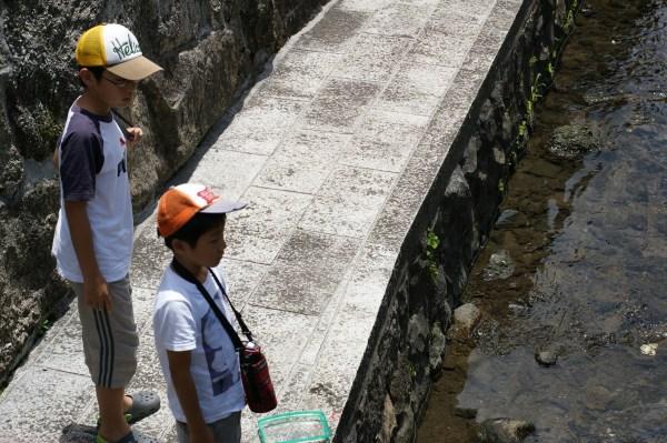滋賀県長浜市の水路