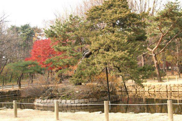 宗廟内の池